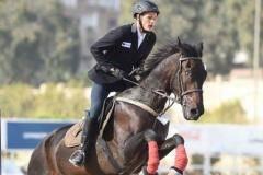 Александр Лифанов: Понять коня непросто...