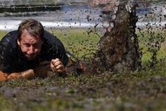 Венгры грязи  не боятся