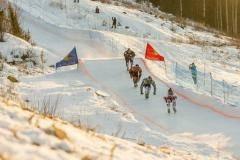 В Подмосковье пройдёт этап чемпионата мира по скоростному спуску на коньках