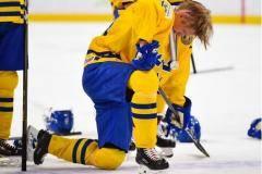 «Швед выбросил медаль за борт – фанату сборной США». Все о финале МЧМ (видео)