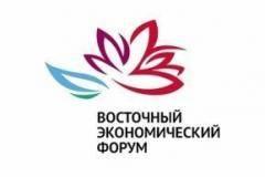 Международный турнир по дзюдо под патронатом Путина и Абэ пройдет во Владивостоке