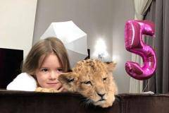 Живой лев на день рождения! Дмитрий Комбаров и другие футболисты в сети