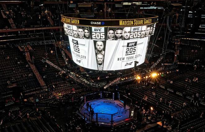 Что? Где? Когда? Все о турнире UFC 230, где Кормье подерется с Льюисом