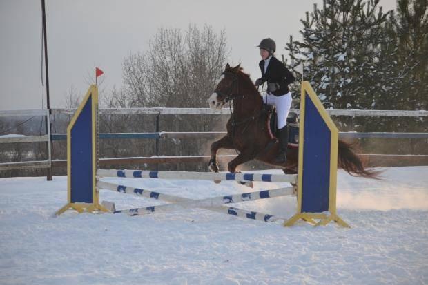 В Выльгорте прошел I этап Кубка Федерации Республики Коми по конному спорту