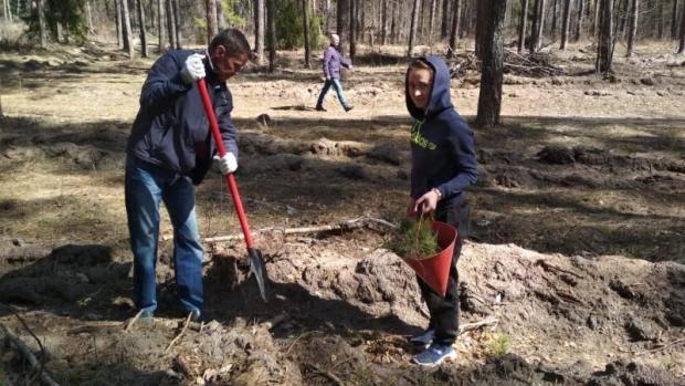 Министерство спорта РТ присоединилось к акции «День посадки леса»