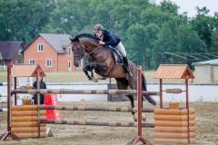 Кубанская станица примет чемпионат Южного Федерального округа по конному спорту