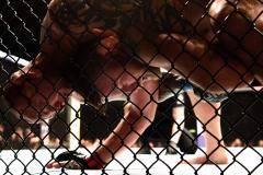 Как Хандожко дебютировал в UFC, а Смит задушил Густафссона. Хайлайты турнира в Швеции