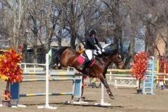 В Челябинске состоится юбилейный Кубок губернатора по конному спорту