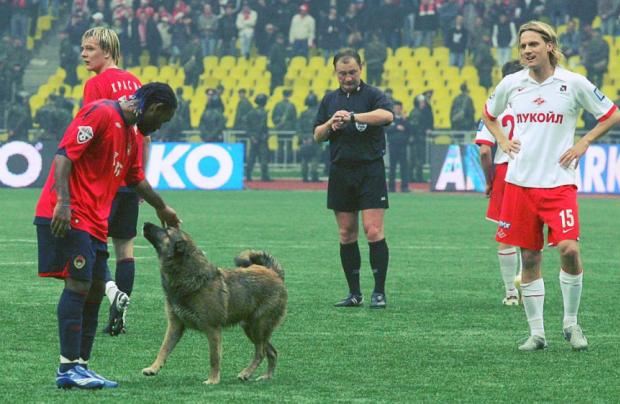 Элвер Рахимич: Было бы прикольно, если бы Вагнер Лав завершил карьеру в ЦСКА