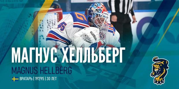 Хелльберг стал игроком «Сочи»