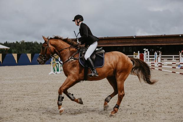III международный конный фестиваль «Иваново Поле» пройдет в Подмосковье с 26 по 29 августа