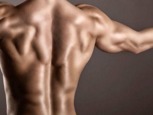 10 видеоуроков для укрепления мышц спины