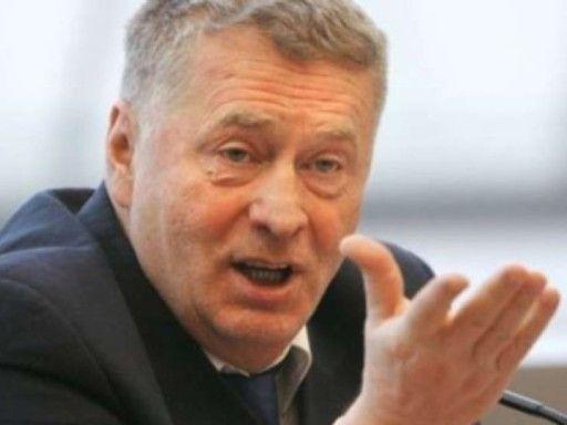 Владимир Жириновский: Нужно агитировать иностранцев, чтобы они выступали за Россию