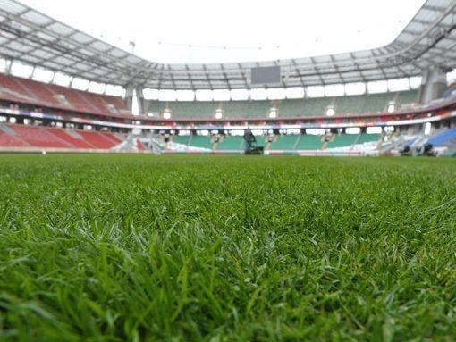 Газон стадиона в Махачкале прошел проверку комиссией РФПЛ