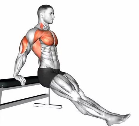 Как правильно делать упражнения с собственным весом?